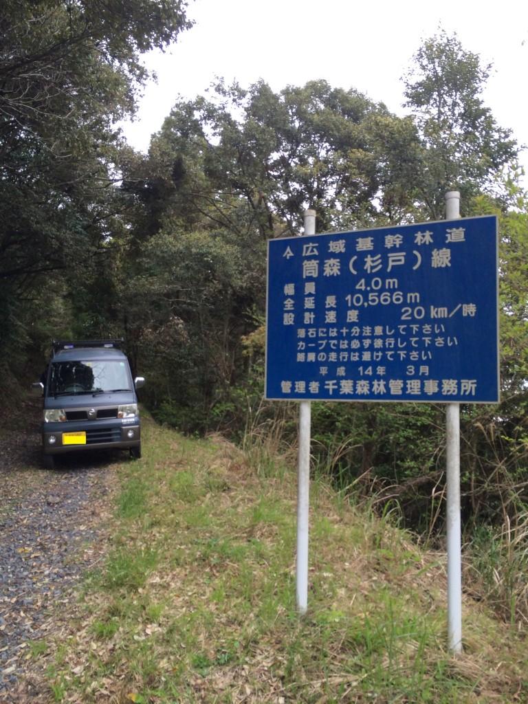杉戸林道-5